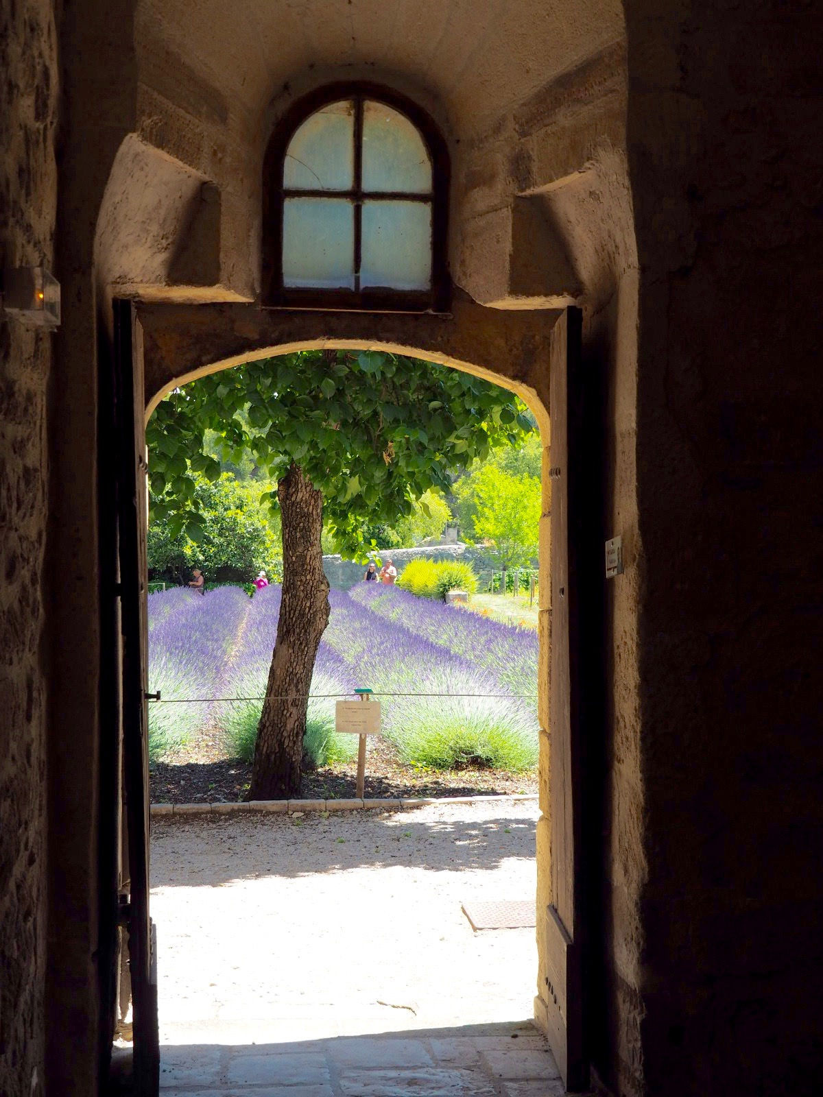 Doorway to lavender