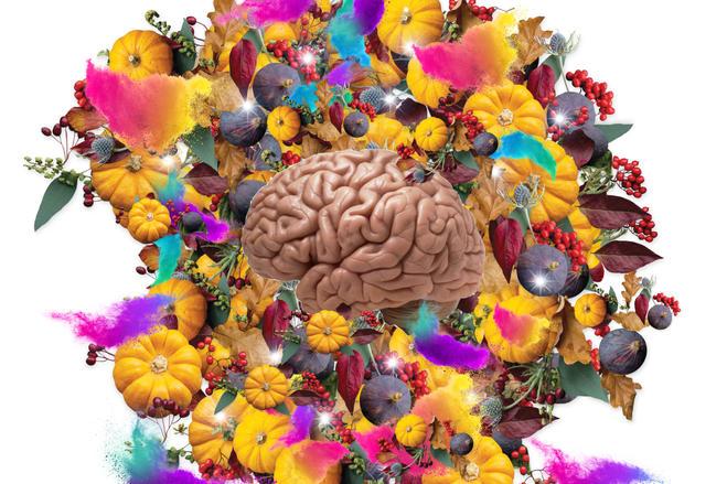 Brain on Pumpkins