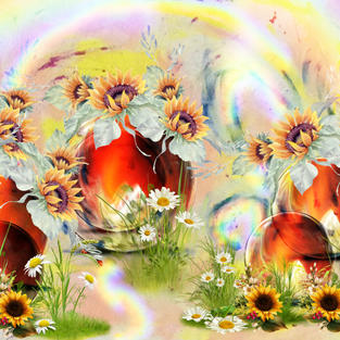 Rainbow over Sunflower thoughts