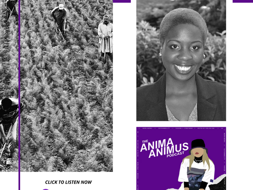 Ep 30. Clothing, Climate Change & Crops - what do these all have in common?