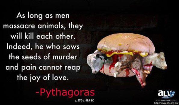 vegetarian, death burger.jpg