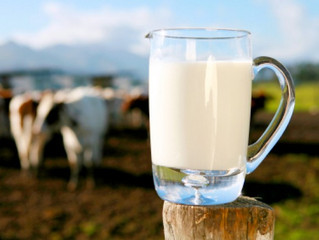 The Miracle Food Of Milk