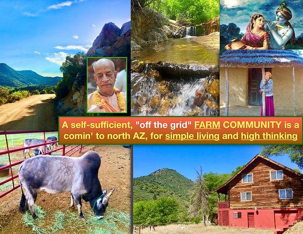 self sufficient farm poster (1).jpg