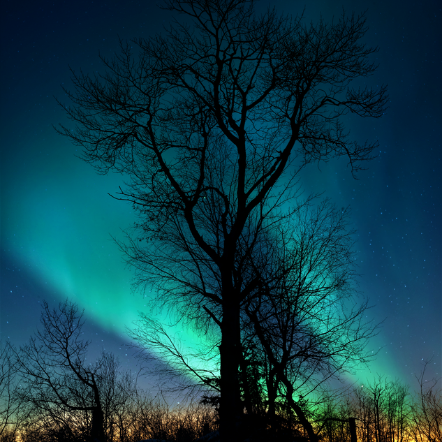Pinehouse-northern-lights.png