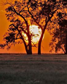 Sunset Moose Jaw