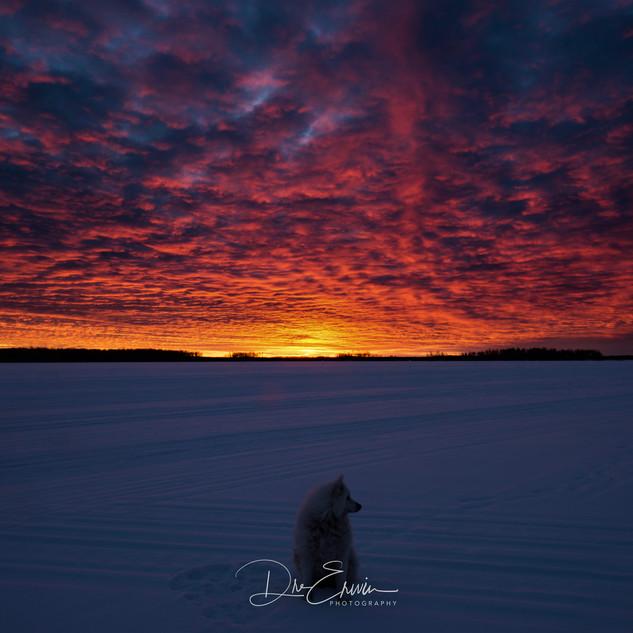 Pinehouse_sunrise.JPG