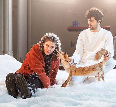 Sneeuwen - Celine Daemen