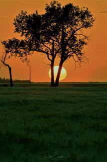 Moose Jaw sunset