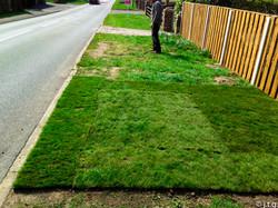 small turf repair