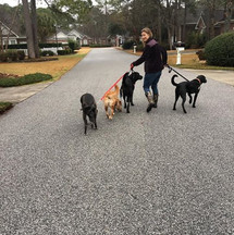 I have turned into the crazy dog lady 🤣