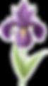FlowerOutline2.png