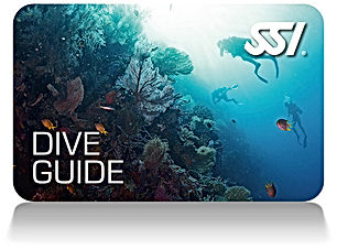 Dive Guide Card.jpg