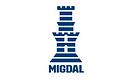 migdal (2).png