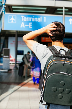 Airport check-in, check in online