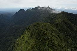 newguinea.jpg