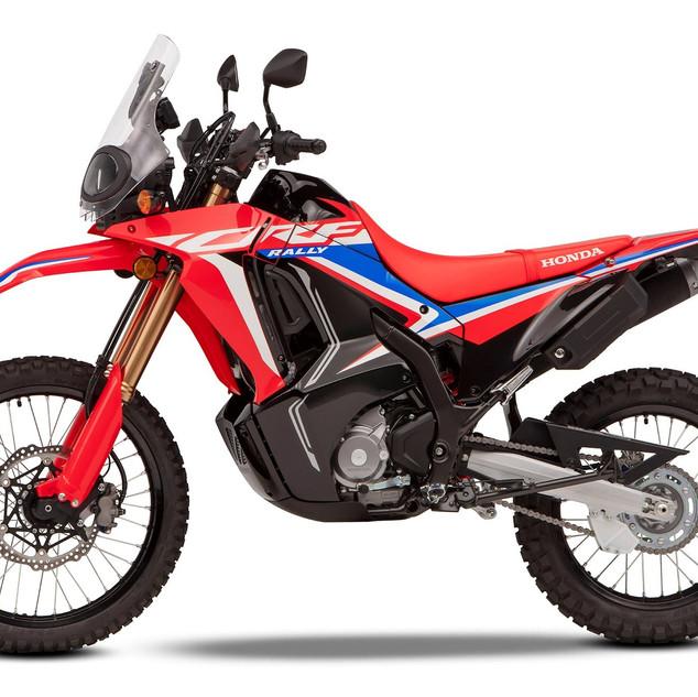 322960_2021_HONDA_CRF300_Rally.jpg