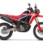 322964_2021_HONDA_CRF300_Rally.jpg