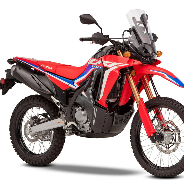 322963_2021_HONDA_CRF300_Rally.jpg