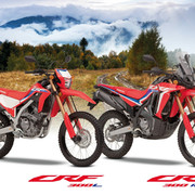 323321_The_new_CRF300L_and_CRF300_RALLY_