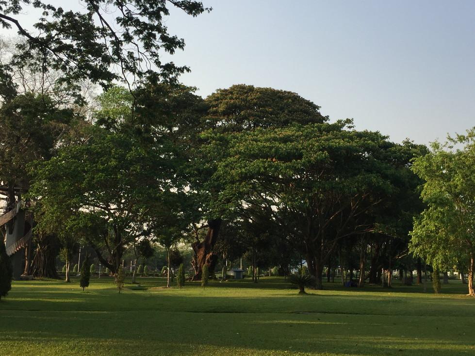 ヤンゴン公園