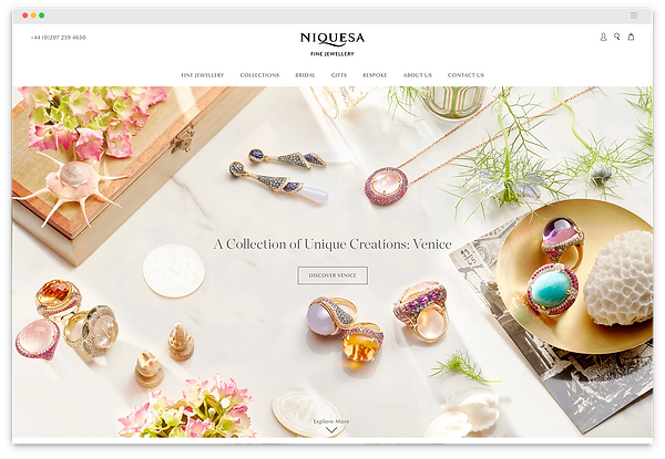 NIQUESA HOMEPAGE SNAP.png