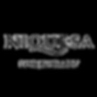 Niquesa Logo.png