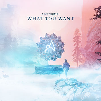 Arc North - What You Want (Artwork).jpg