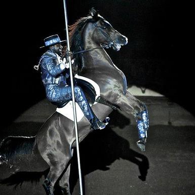Stunt Performer Spotlight: Tomar Boyd