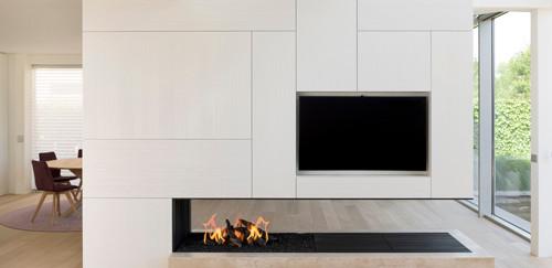 3-sided woodburning fireplace