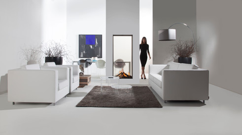 See-through Vertical gas fireplace