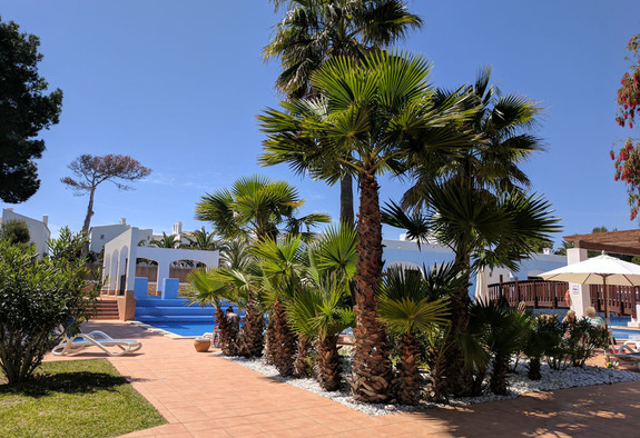 Our immaculate gardens in Cala d'Or