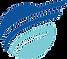Focal1-Logo.png