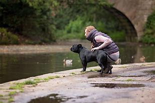 Black Staffy staffordshire bull terrier Dog photography Lancashire Cumbria