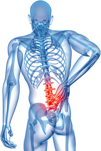 Discover all the possible causes of your Lower Back Pain!