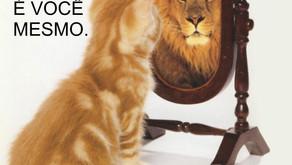 O Universo é um espelho