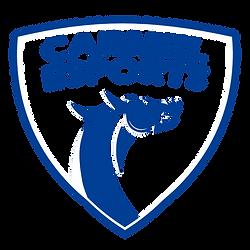 Transparent_Carmel_Logo.png