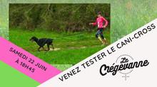 Venez tester le cani-cross