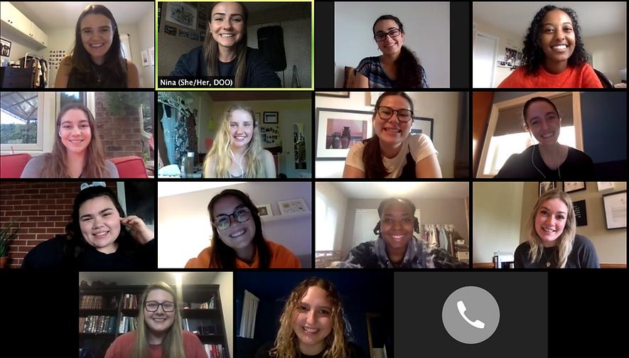Image of volunteers and members in a zoom meeting