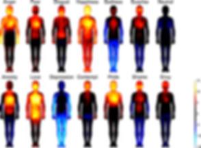 מפות הגוף של הרגשות.png