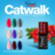 ReformA Catwalk.jpg
