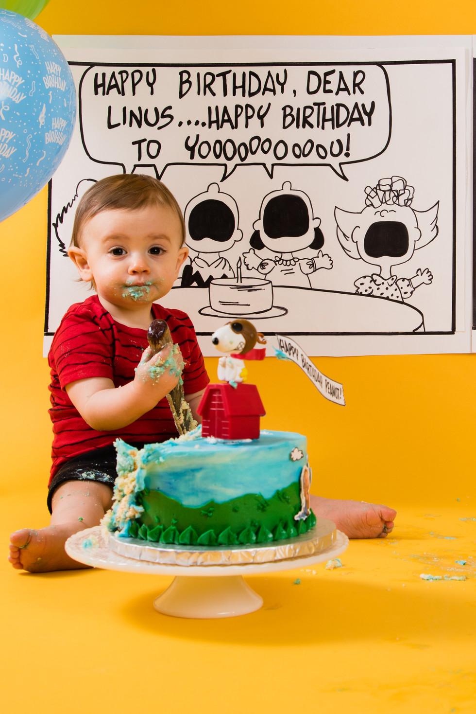 Cake Smash- Linus-39.jpg