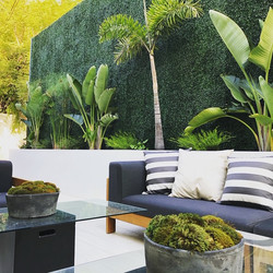 Luxury Residential Patio Beverly Hills