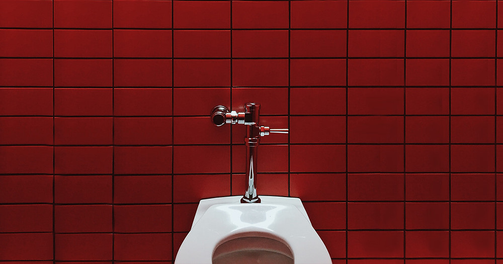 toilet in front of red tile