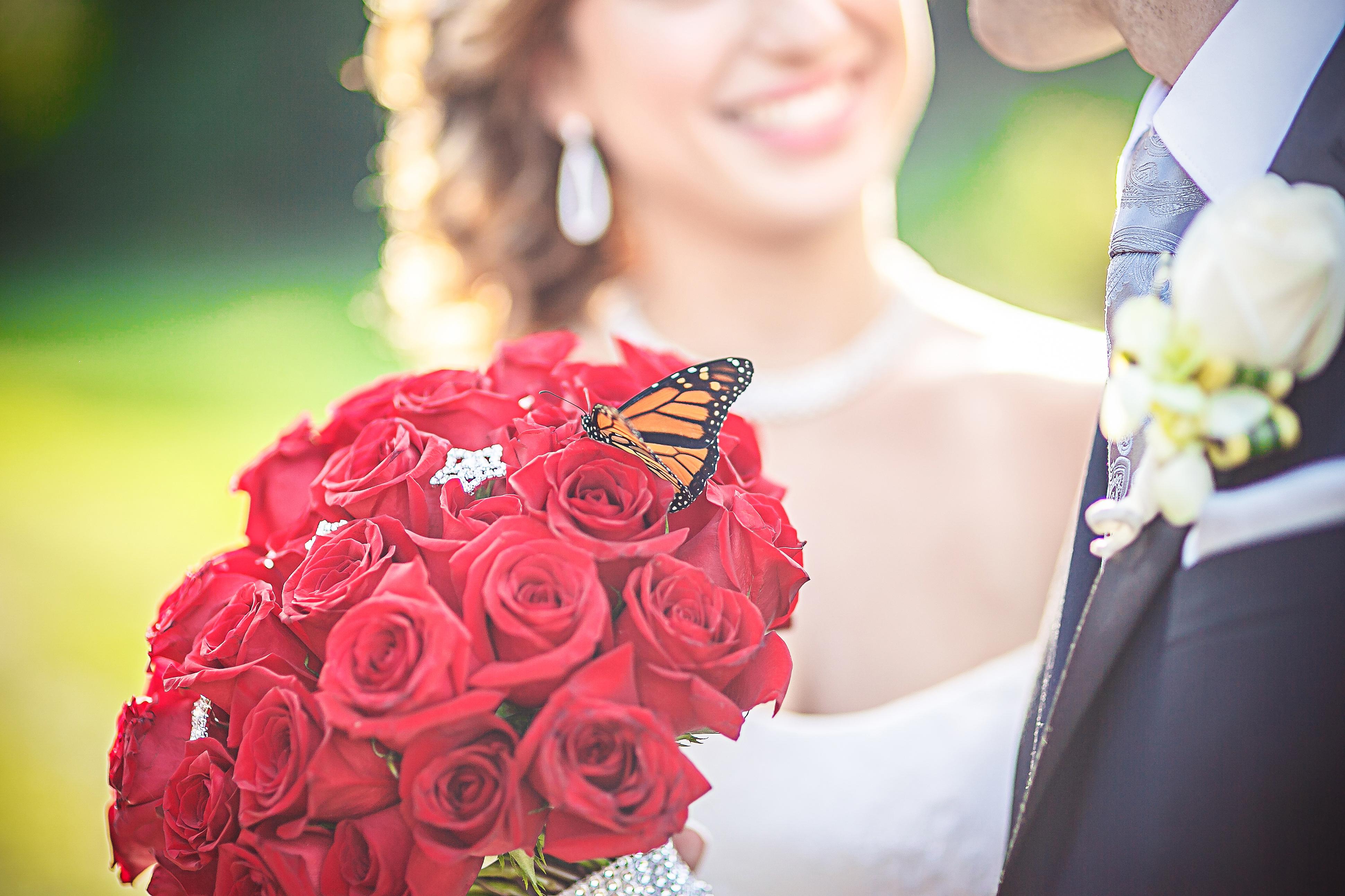 Pre Wedding 011