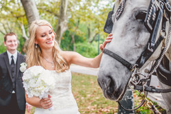 Pre Wedding 014
