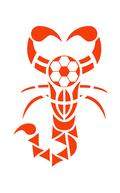 Scorpion Soccer Team