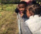 Screen Shot 2019-10-17 at 10.17.05 AM.pn
