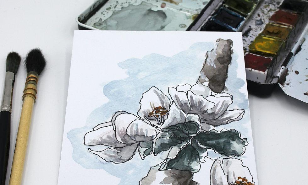 Postkarte Apfelblüte