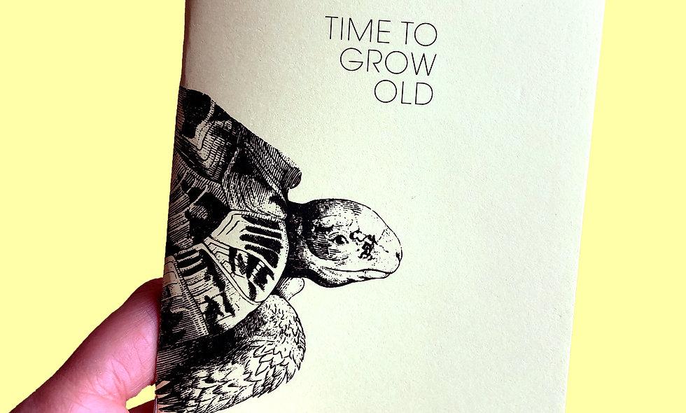 Notizheft – Schildkröte