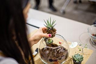 Planting succulent terrarium.jpg